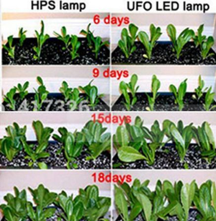 Comparatie hps ufo led